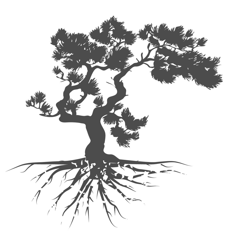 Cedar-Tree-Counseling