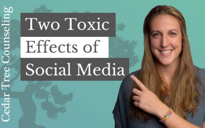 2 Toxic Effects of Social Media in Teens