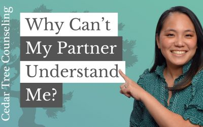 Why Can't My Partner Understand Me?